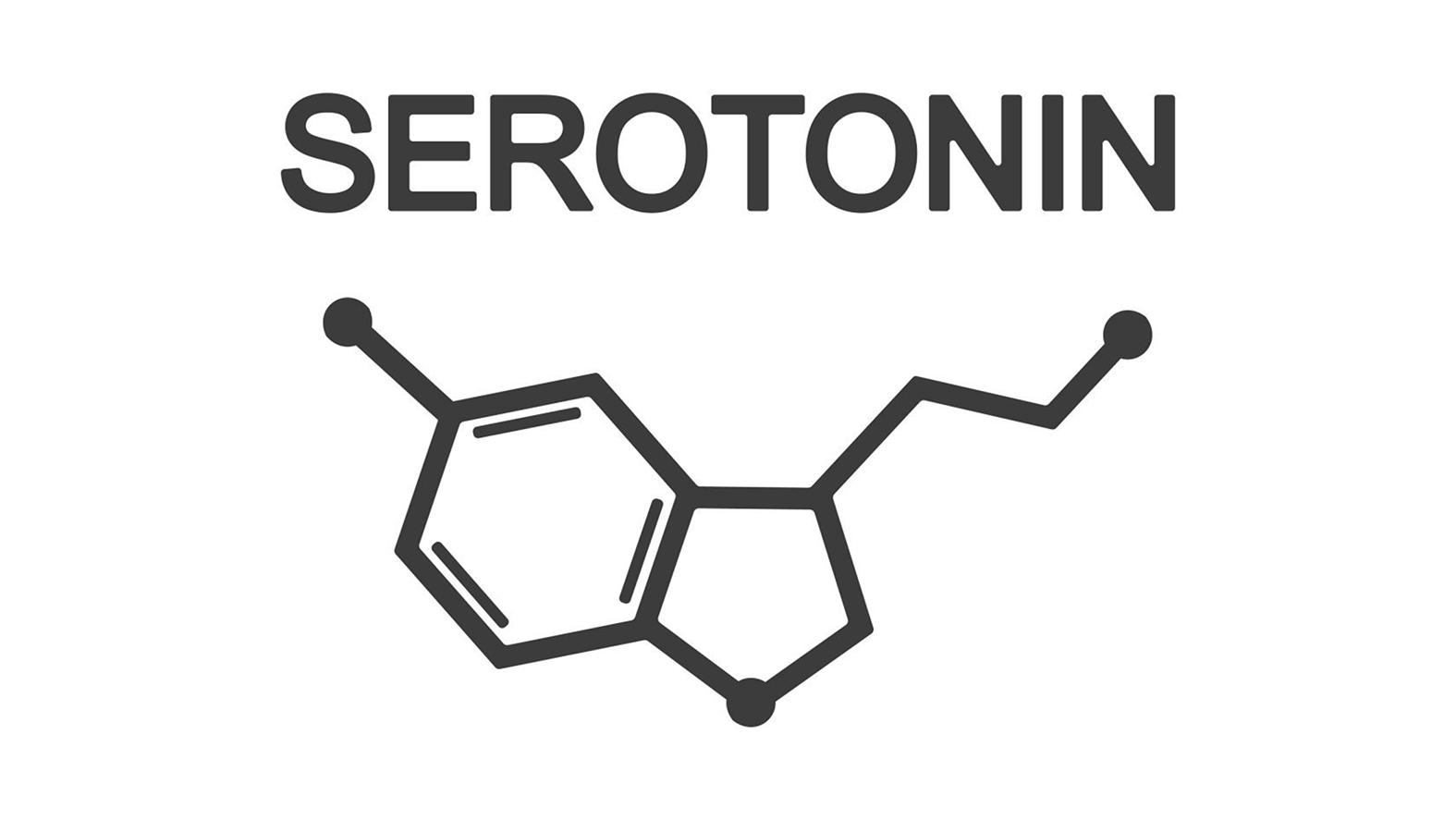 Serotonin and Substance