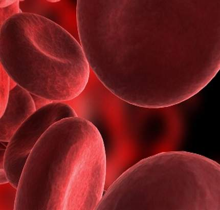 Erythrocytosis or High red blood cell count